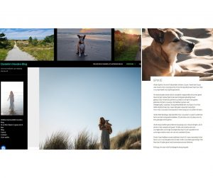 Honden-Blog